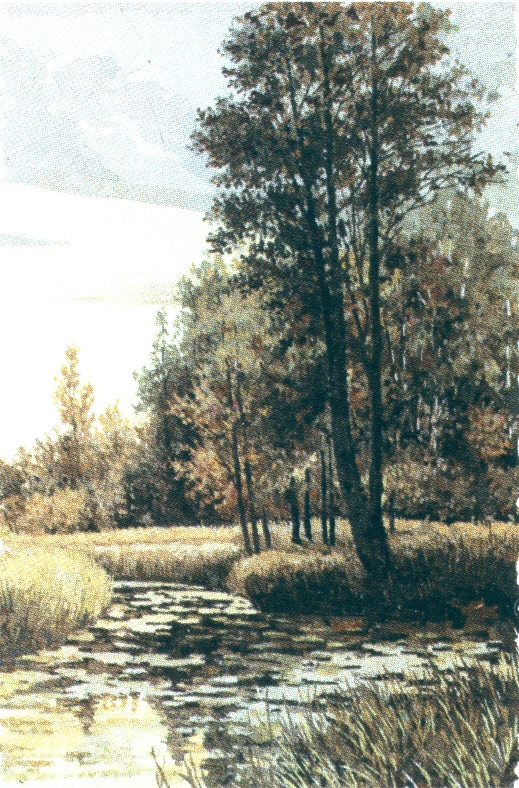 Хвощевские хвощи. 2006 г.