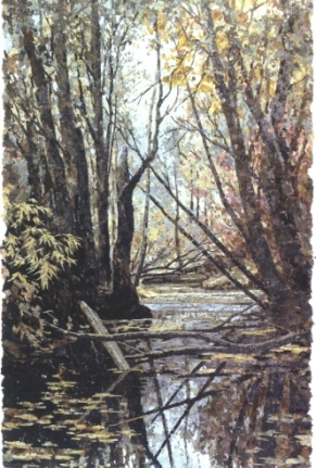 Начинается река. 2009 г.