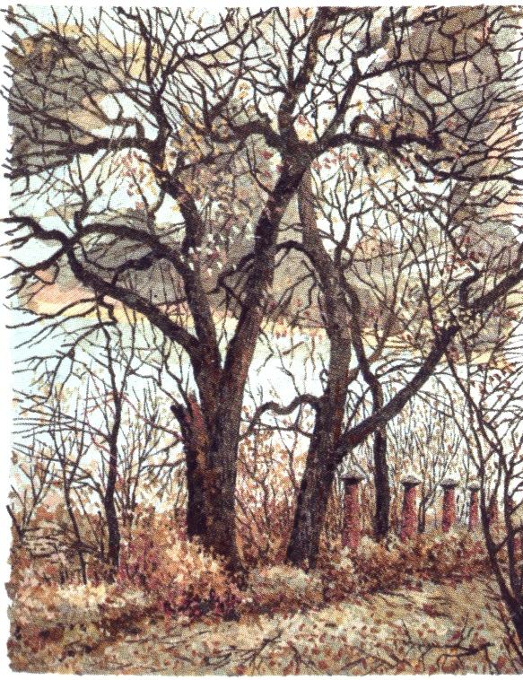 Осенний стриптиз. 2009 г.