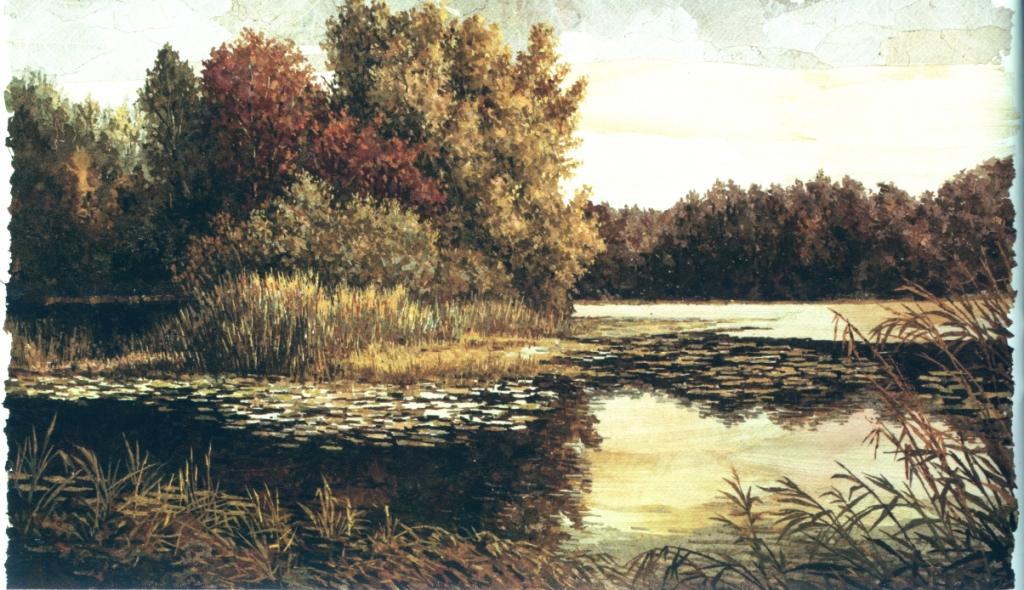 Озеро Масленское. 2009 г.